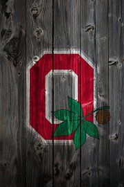 Buckeyes OSU Ohio State fence