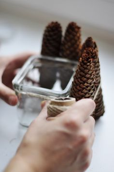 Simple DIY Pine Cone Candle Holder | Shelterness