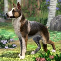 German Shepherd Improved 2.0 - Panda by LittleV - The Exchange - Community - The Sims 3