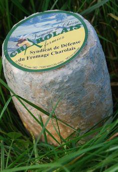 Charolais - Le Charolais est un fromage de chèvre de Bourgogne, sa forme est cylindrique et il pèse entre 250 et 310 grammes après 16 jours d'affinage, c'est à dire le minimum pour l'AOC. Le fromage Charolais mesure 7cm de hauteur et 6cm de diamètre minimum à mi-hauteur.