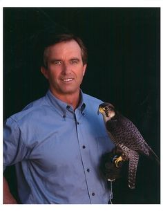 """Day of Falconry with Robert F Kennedy Jr in New York State 