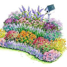 Front Yard Garden Design No-Fuss Bird and Butterfly Garden Plan ~ possible new plan for 2013 - Plant this collection of beautiful, easy-growing flowers and your yard is sure to be filled with birds and butterflies. Flower Yellow, Butterfly Weed, Butterflies, Butterfly Flowers, Cut Flowers, Hummingbird Garden, How To Attract Birds, Garden Cottage, Garden Bed