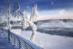 Photo Polar Vortex in Niagara Falls by Magda  Bognar on 500px