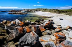 ay of Fires, Tasmania, Australia