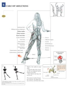 The Anatomy of The Upright Row Workout. The upright row is a weight training exercise performed by holding a grips with the overhand grip and lifting it str Fitness Tips, Fitness Motivation, Bodybuilding, Gluteal Muscles, Nutrition Sportive, Muscle Anatomy, Body Anatomy, Butt Workout, Fitness Routines