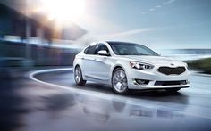 Looking for a bold, one-of-a-kind look for Fall? Step into the 2015 Cadenza!