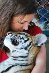 Tiger kingdom at Chiangmai Thailand! This is a MUST when I go to Thailand, I want to hold a baby tiger :)