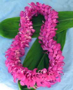 Double Orchid Fresh Hawaiian Leis with Purple Hawaiian Orchids Plumeria Flowers, Hawaiian Flowers, Hawaiian Leis, Dendrobium Orchids, Purple Orchids, Garland Wedding, Wedding Flowers, Orchid Lei, Flower Lei