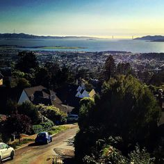 #Berkeley #SF #sanfran #sanfrancisco #bayarea #thecity #thebayarea #goldengatebridge #ca #beautiful #beauty #thebay