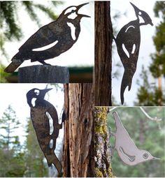 Ave 4 Pack un pájaro carpintero Meadowlark Nuthatch por writedesign