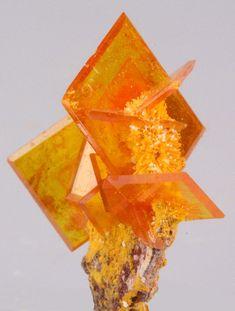 Wulfenite crystal. Wonderful color and shape