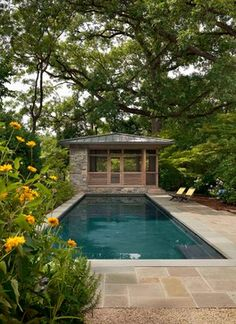 Cleveland Park Treehouse - contemporary - pool - dc metro - Cunningham | Quill Architects