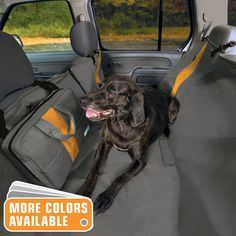 Kurgo's Wander Hammock is the best car seat cover for dogs and pets.