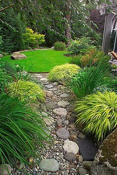 Great Traditional Landscape/Yard