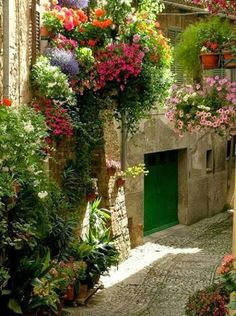 Cobblestone Street, Spello……Italy