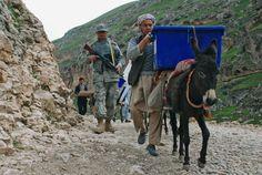 Petugas pemilu Afghanistan menggunakan keledai untuk mengangkut kartu suara pemilu.