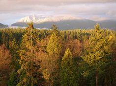 TripAdvisor julkaisi ennen juhannusta matkailijoiden valinnat maailman parhaiksi maamerkeiksi ja puistoiksi. Vancouverin Stanley Park sai maailman parhaan puiston tittelin. Eikä suotta. Tässä minun perusteluni kuvien kera.