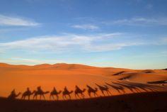 camping-sahara-desert-erg-chebbi-sand-dunes-morocco - camel- trek)