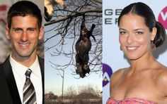Novak Djokovic & Ana Ivanovic: Take a stand against rampant animal abuse in Serbia! | YouSignAnimals.org