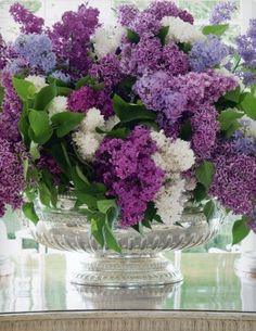 ✿Flores-Flowers!!!