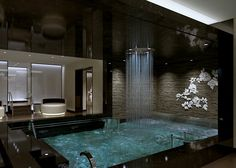 Master Bath anyone?> The Lotus Spa on the Royal Princess.