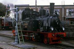 """Dampflok """"Spreewald"""" des DEV › Eisenbahnfotos aus Deutschland"""