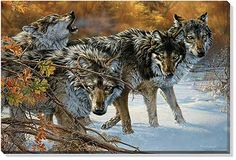 F476066371: Body Language Wolves Wrapped Canvas Art by Lee Kromschroeder