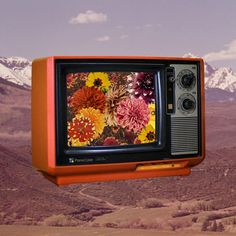 Color TV | Collage by Julia Walck