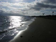 The beach I walked so often in my youth. Alameda California. -pr