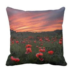 #photo - #Poppies at Bamburgh Pillow/Cushion Throw Pillow
