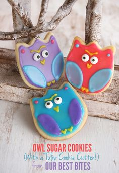 Easy Owl Cookies, use a Tulip cookie cutter, from Our Best Bites Owl Sugar Cookies, Halloween Sugar Cookies, Galletas Cookies, Cupcakes, Cupcake Cookies, Cookie Icing, Royal Icing Cookies, Cookie Cutters, Macarons