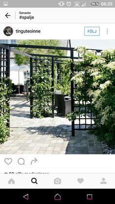 Spaljé Diy Patio, Diy Pergola, Fence Design, Garden Design, Concrete Patio, Garden Cottage, Garden Structures, Outdoor Projects, Dream Garden