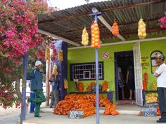 Citrusdal African House, Xhosa, Lush Garden, Red Sea, Cape Town, Live, West Coast, South Africa, Entertaining