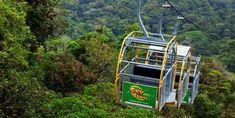 Monteverde Costa Rica Cloud Forest - info / maps / Hotels / Rainforest