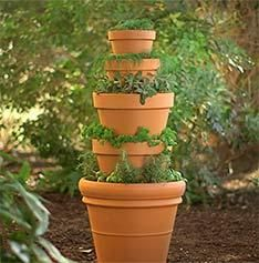 What's your favorite herb? Grow it in an Herb Tower Container Garden, and keep it near your kitchen or outdoor grill.  Join us May 17th, 2014 at 6:30pm for our Clinic on how to create this Herb Tower.