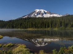 mount rainier at night and other helpful info