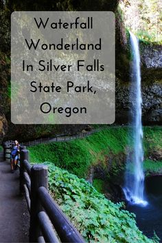 Waterfall Wonderland In Silver Falls State Park, Oregon