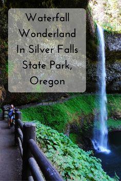 Waterfall Wonderland In Silver Falls State Park, Oregon