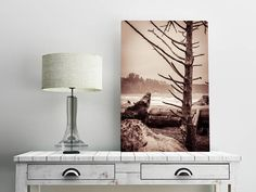 Coast Black and White Beach Wall Art Print -- Fine Art landscape photography, Ocean, Tree, Washington Home Decor, HeatherRobersonPhoto