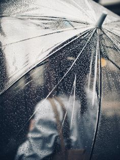 Singing in the rain with a simple, clear umbrella. Singing in the rain with a simple, clear umbrella. I Love Rain, No Rain, Walking In The Rain, Singing In The Rain, Rainy Day Photos, Umbrella Photography, Rainy Day Photography, Kubo And The Two Strings, Smell Of Rain