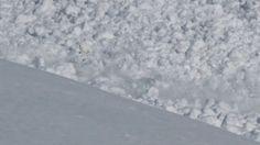 Dieser Hase hier kennt keine Angst und springt so dem Tod von der Schippe, eigentlich von der Lawine. Seht ihr ihn? Da im linken Drittel des Bildes? WOW! AUCH INTERESSANT: Filter by Post type Post Page Category Sort by Title Relevance Lawinen Cliff Jump Nachfolgend ein absolut grandioses Video von Matthias Giraud und Stefan Launde [ ]