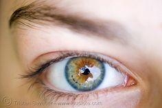 beautiful eye, iris freckles - Click photo to visit site and view larger image Beautiful Eyes Color, Pretty Eyes, Cool Eyes, Amazing Eyes, Blue Hazel Eyes, Green Eyes, Heterochromia Eyes, Aesthetic Eyes, Tired Eyes