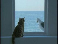 Cat and seagull painting