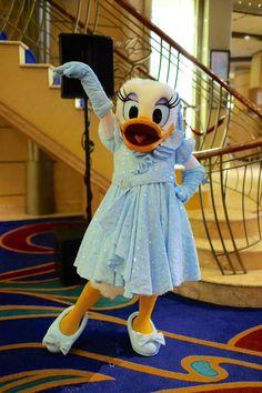 74507135ae30bdb265309b0a50f909b8--daisy-duck-donald-duck.jpg