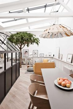 kitchen-living-pnedant-light-tree-parisian-
