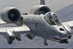 Flying gun,AKA A 10 Warthog  I LOVE this baby.  Saw it at an airshow and fell in love!