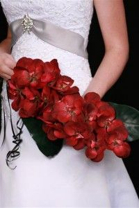 Red orchid wedding b