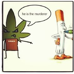 Weed Is Cure, Cigarette Is The Murderer. Weed Memes From RedEyesOnline.com