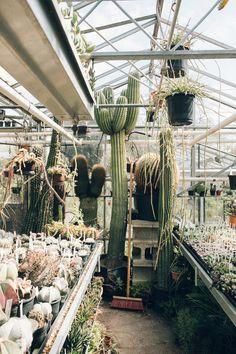 Simple Botanische Tuin Zuidas Amsterdam
