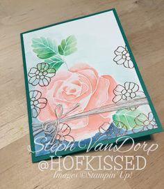 Watercolouring Meets Embossing - Hofkissed, Stampin' Up!, Rose Wonder, Aqua Painters, heat embossing, greeting cards, handmade